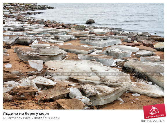 Купить «Льдина на берегу моря», фото № 220378, снято 13 февраля 2008 г. (c) Parmenov Pavel / Фотобанк Лори