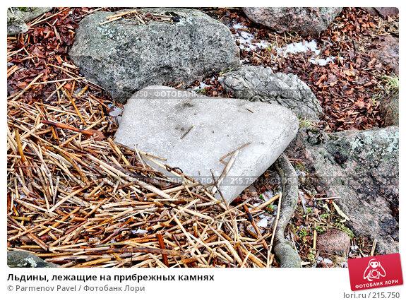 Льдины, лежащие на прибрежных камнях, фото № 215750, снято 13 февраля 2008 г. (c) Parmenov Pavel / Фотобанк Лори