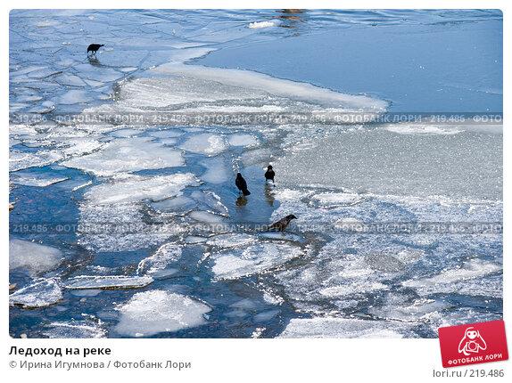 Ледоход на реке, фото № 219486, снято 9 марта 2008 г. (c) Ирина Игумнова / Фотобанк Лори