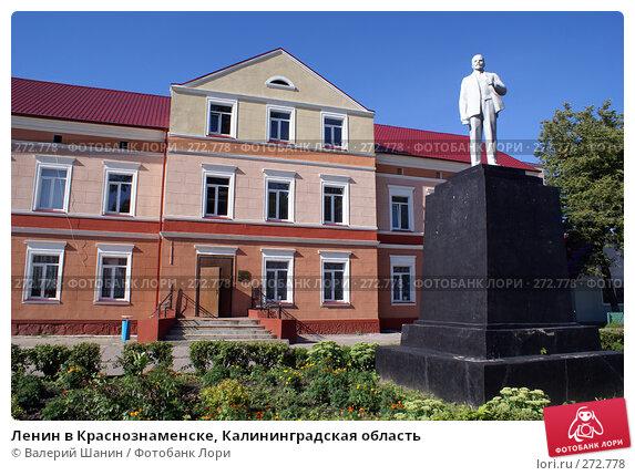 Купить «Ленин в Краснознаменске, Калининградская область», фото № 272778, снято 26 июля 2007 г. (c) Валерий Шанин / Фотобанк Лори