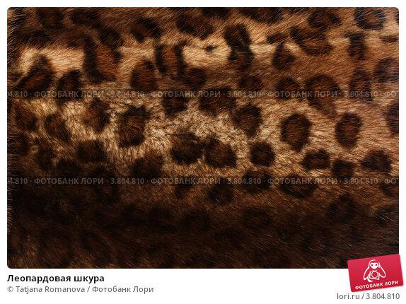 леопардовая печать