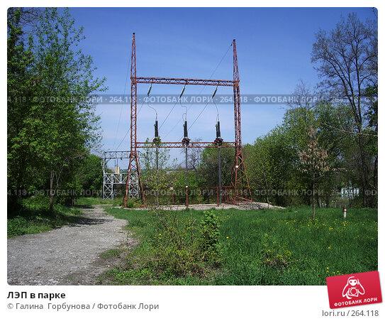 ЛЭП в парке, фото № 264118, снято 24 апреля 2007 г. (c) Галина  Горбунова / Фотобанк Лори