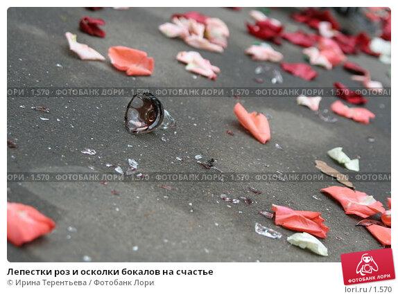 Лепестки роз и осколки бокалов на счастье, эксклюзивное фото № 1570, снято 14 октября 2005 г. (c) Ирина Терентьева / Фотобанк Лори