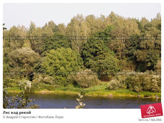 Лес над рекой, фото № 166050, снято 24 августа 2007 г. (c) Андрей Старостин / Фотобанк Лори