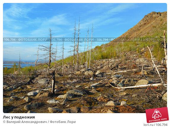 Лес у подножия, фото № 106794, снято 5 сентября 2007 г. (c) Валерий Александрович / Фотобанк Лори