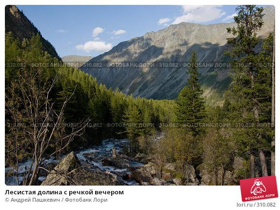 Лесистая долина с речкой вечером, фото № 310082, снято 24 июля 2017 г. (c) Андрей Пашкевич / Фотобанк Лори