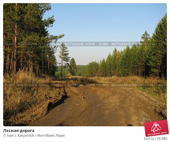 Лесная дорога, фото № 15082, снято 1 октября 2005 г. (c) Ivan I. Karpovich / Фотобанк Лори