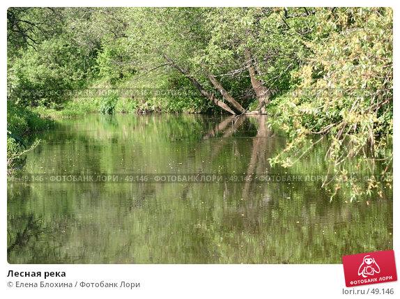 Лесная река, фото № 49146, снято 20 мая 2007 г. (c) Елена Блохина / Фотобанк Лори