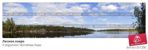 Лесное озеро, фото № 211250, снято 25 октября 2016 г. (c) Argument / Фотобанк Лори