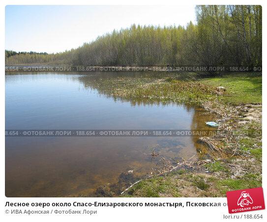 Лесное озеро около Спасо-Елизаровского монастыря, Псковская область, фото № 188654, снято 7 мая 2007 г. (c) ИВА Афонская / Фотобанк Лори