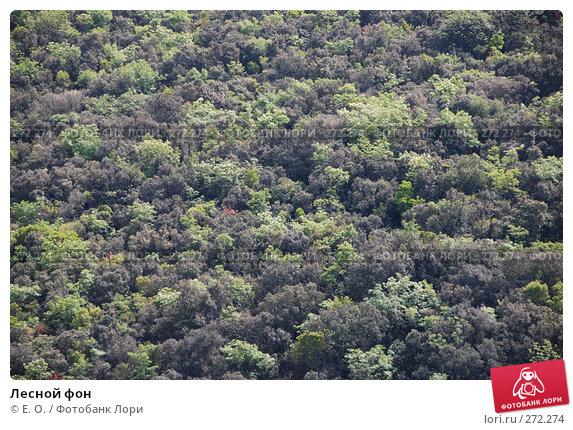 Купить «Лесной фон», фото № 272274, снято 25 апреля 2008 г. (c) Екатерина Овсянникова / Фотобанк Лори
