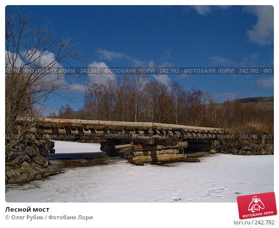 Лесной мост, фото № 242782, снято 29 марта 2008 г. (c) Олег Рубик / Фотобанк Лори