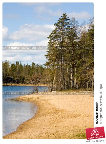 Купить «Лесной пляж», фото № 48962, снято 1 мая 2007 г. (c) Argument / Фотобанк Лори