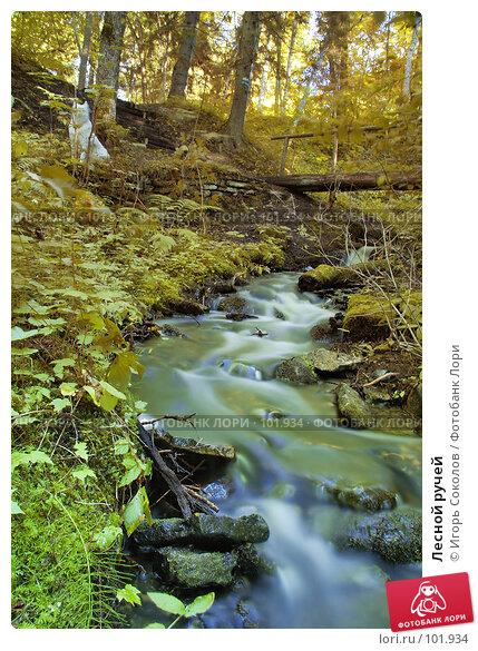 Купить «Лесной ручей», фото № 101934, снято 14 декабря 2017 г. (c) Игорь Соколов / Фотобанк Лори