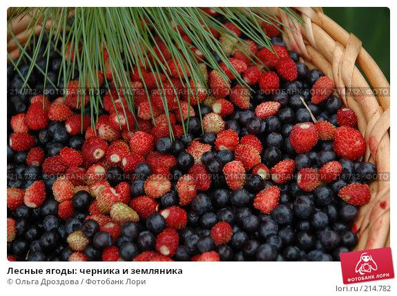 Лесные ягоды: черника и земляника, фото № 214782, снято 11 июля 2005 г. (c) Ольга Дроздова / Фотобанк Лори