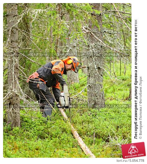 Купить «Лесоруб измеряет длину бревна и очищает его от веток», фото № 5054778, снято 10 июля 2013 г. (c) Валерия Попова / Фотобанк Лори