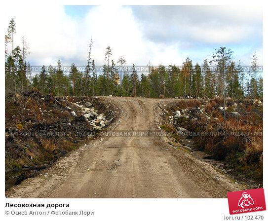Лесовозная дорога, фото № 102470, снято 25 февраля 2017 г. (c) Осиев Антон / Фотобанк Лори