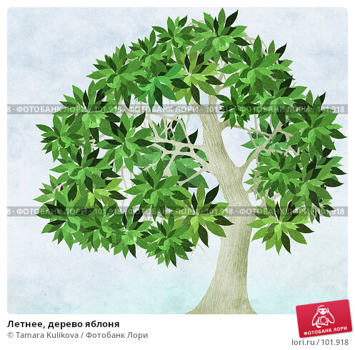 Летнее, дерево яблоня, иллюстрация № 101918 (c) Tamara Kulikova / Фотобанк Лори