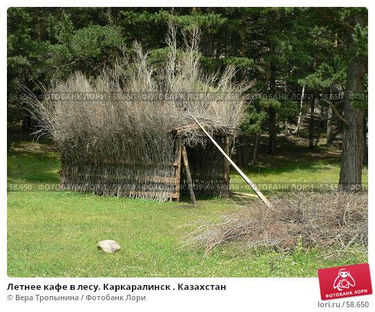 Летнее кафе в лесу. Каркаралинск . Казахстан, фото № 58650, снято 4 июля 2007 г. (c) Вера Тропынина / Фотобанк Лори