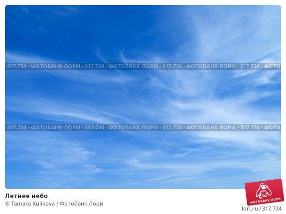 Купить «Летнее небо», фото № 317734, снято 8 июня 2008 г. (c) Tamara Kulikova / Фотобанк Лори
