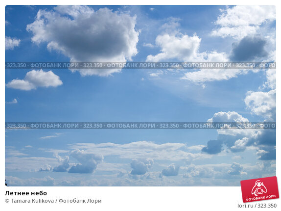 Купить «Летнее небо», фото № 323350, снято 15 июня 2008 г. (c) Tamara Kulikova / Фотобанк Лори