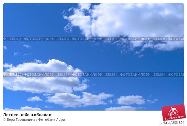 Летнее небо в облаках, фото № 233894, снято 19 января 2017 г. (c) Вера Тропынина / Фотобанк Лори
