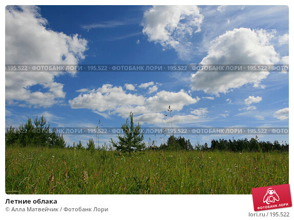 Купить «Летние облака», фото № 195522, снято 17 июня 2007 г. (c) Алла Матвейчик / Фотобанк Лори