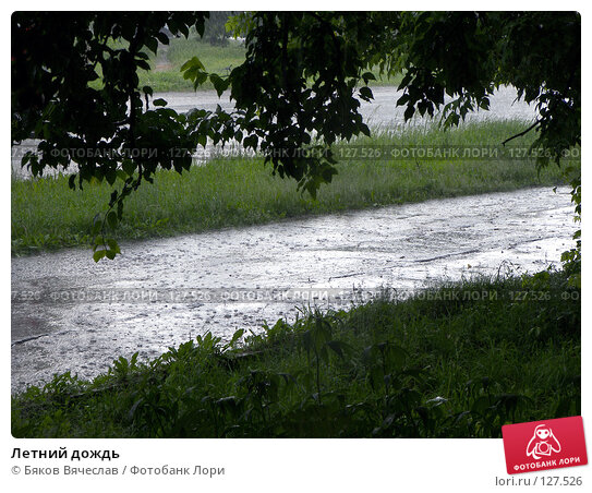 Летний дождь, фото № 127526, снято 29 июня 2007 г. (c) Бяков Вячеслав / Фотобанк Лори