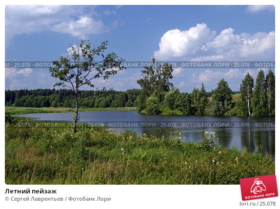 Летний пейзаж, фото № 25078, снято 23 июня 2017 г. (c) Сергей Лаврентьев / Фотобанк Лори