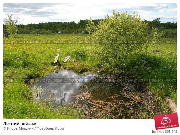 Купить «Летний пейзаж», фото № 305942, снято 31 мая 2008 г. (c) Игорь Мошкин / Фотобанк Лори
