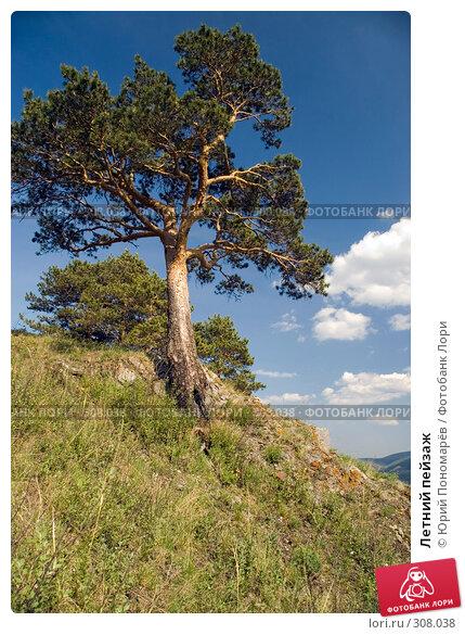 Летний пейзаж, фото № 308038, снято 19 мая 2008 г. (c) Юрий Пономарёв / Фотобанк Лори