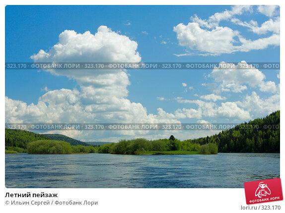 Купить «Летний пейзаж», фото № 323170, снято 14 июня 2008 г. (c) Ильин Сергей / Фотобанк Лори