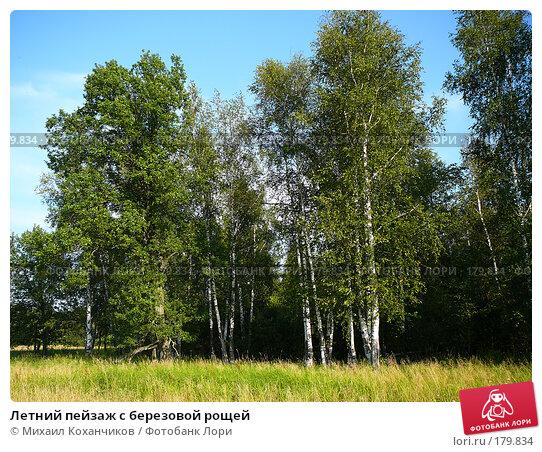 Летний пейзаж с березовой рощей, фото № 179834, снято 6 августа 2007 г. (c) Михаил Коханчиков / Фотобанк Лори