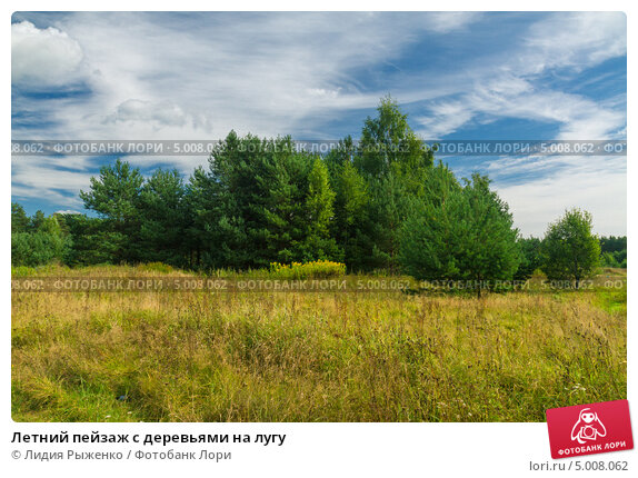 Летний пейзаж с деревьями на лугу, фото № 5008062, снято 15 августа 2013 г. (c) Лидия Рыженко / Фотобанк Лори