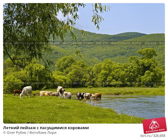 Купить «Летний пейзаж с пасущимися коровами», фото № 326658, снято 8 июня 2008 г. (c) Олег Рубик / Фотобанк Лори