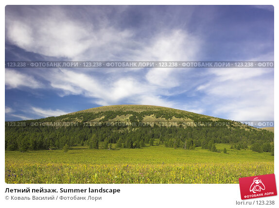 Летний пейзаж. Summer landscape, фото № 123238, снято 30 мая 2017 г. (c) Коваль Василий / Фотобанк Лори