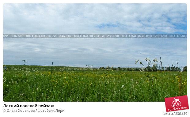 Летний полевой пейзаж, фото № 236610, снято 11 июня 2007 г. (c) Ольга Хорькова / Фотобанк Лори