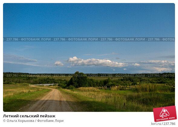 Летний сельский пейзаж, фото № 237786, снято 22 октября 2016 г. (c) Ольга Хорькова / Фотобанк Лори