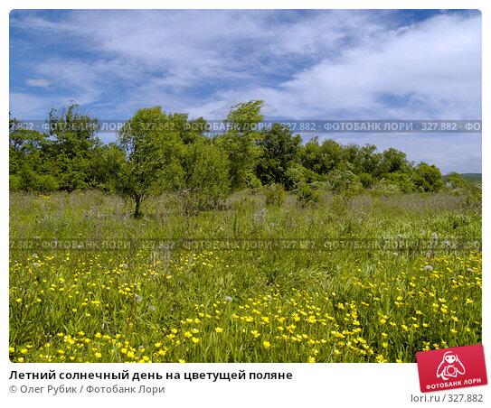 Летний солнечный день на цветущей поляне, фото № 327882, снято 10 июня 2008 г. (c) Олег Рубик / Фотобанк Лори