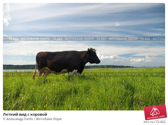 Летний вид с коровой, фото № 72422, снято 1 июля 2007 г. (c) Александр Fanfo / Фотобанк Лори