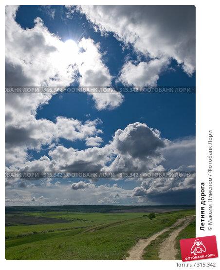 Купить «Летняя дорога», фото № 315342, снято 15 мая 2008 г. (c) Максим Пименов / Фотобанк Лори