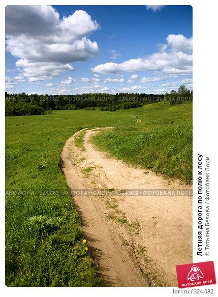 Купить «Летняя дорога по полю к лесу», фото № 324082, снято 1 июня 2008 г. (c) Татьяна Белова / Фотобанк Лори