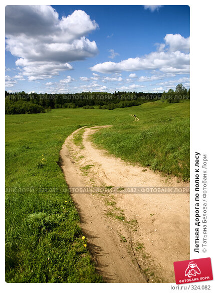Летняя дорога по полю к лесу, фото № 324082, снято 1 июня 2008 г. (c) Татьяна Белова / Фотобанк Лори
