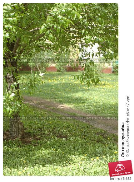 Летняя лужайка, фото № 3682, снято 29 мая 2006 г. (c) Юлия Яковлева / Фотобанк Лори