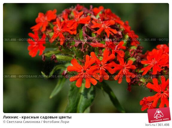Где можно купить садовые цветы екатеринбург.где купить дешево цветы