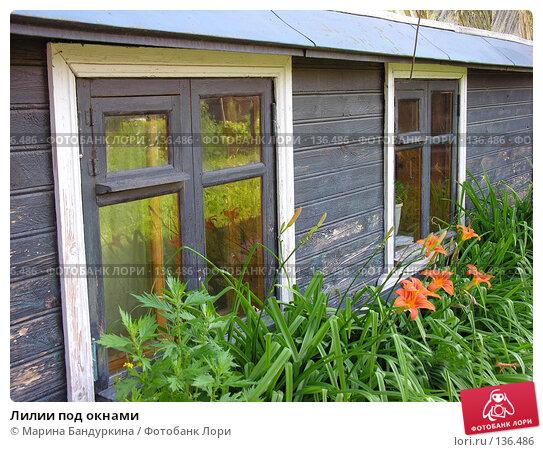 Купить «Лилии под окнами», фото № 136486, снято 13 июля 2007 г. (c) Марина Бандуркина / Фотобанк Лори
