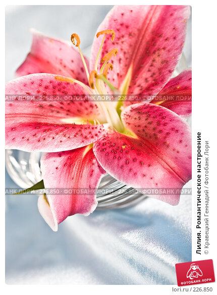 Лилия. Романтическое настроение, фото № 226850, снято 3 августа 2005 г. (c) Кравецкий Геннадий / Фотобанк Лори