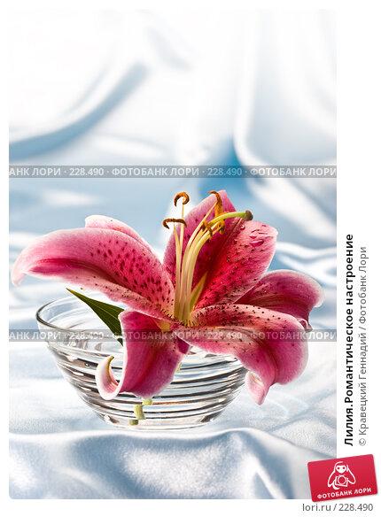 Купить «Лилия.Романтическое настроение», фото № 228490, снято 3 августа 2005 г. (c) Кравецкий Геннадий / Фотобанк Лори