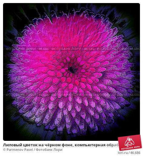 Лиловый цветок на чёрном фоне, компьютерная обработка, иллюстрация № 46686 (c) Parmenov Pavel / Фотобанк Лори