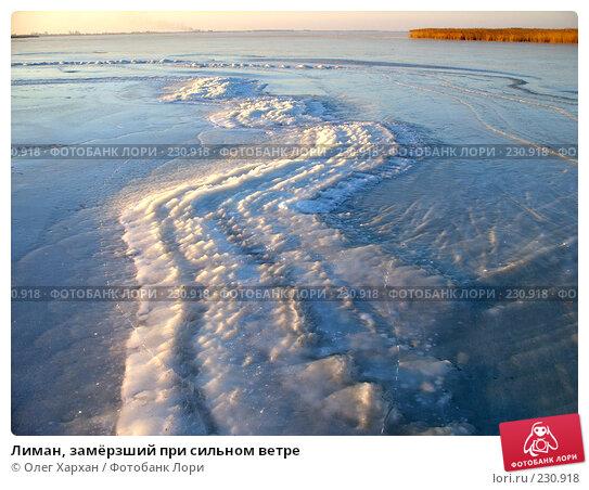 Купить «Лиман, замёрзший при сильном ветре», фото № 230918, снято 12 января 2008 г. (c) Олег Хархан / Фотобанк Лори